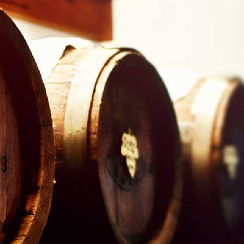 matured wine barrels